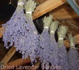 Buy 2 Dried Lavender Bunches
