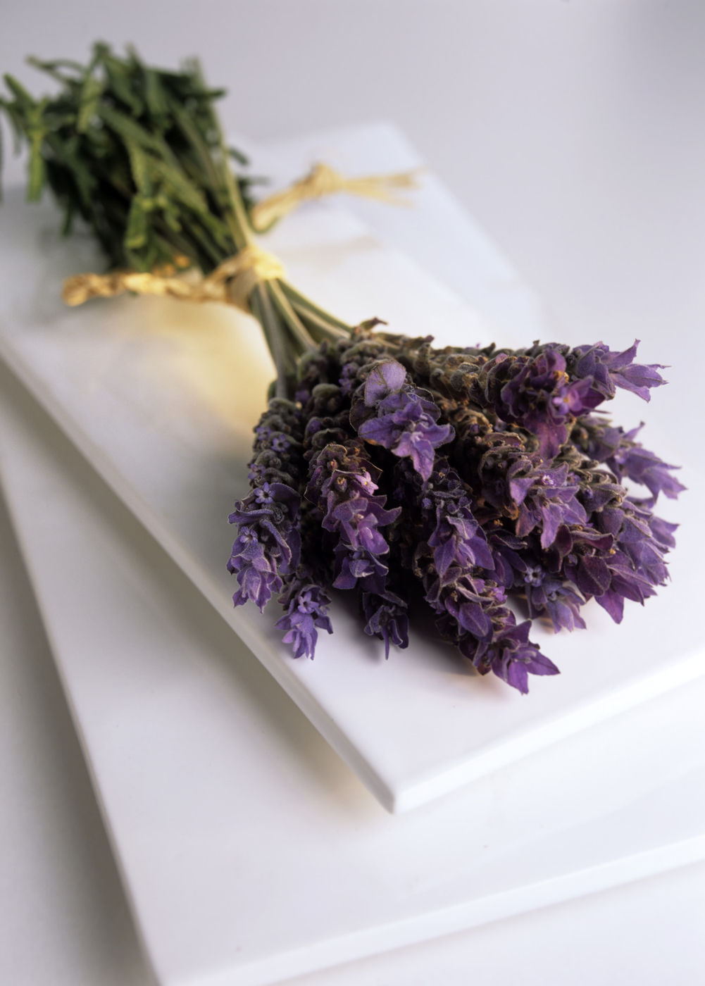 Lavender Flower Bundle