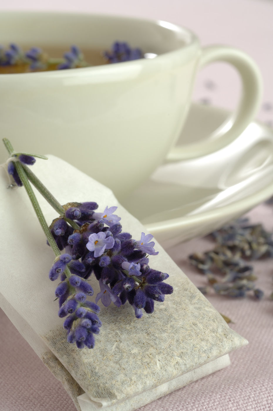 Lavender Tea in Teacup, Lavender Flower Tea Recipe